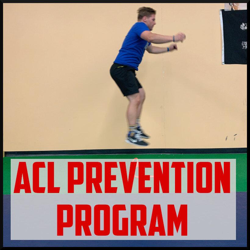 acl prevention program cover