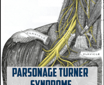 Parsonage turner syndrome cover