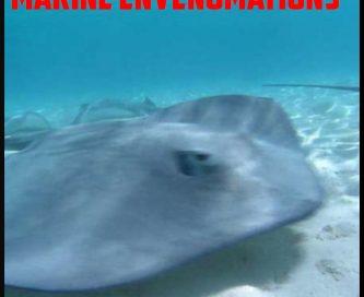 marine envenomations cover