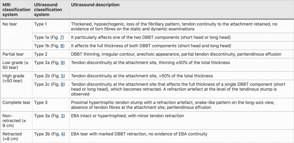 Classification of distal biceps tendon ruptures