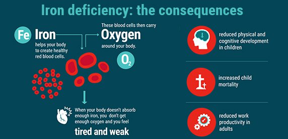 The consequences of iron deficiency